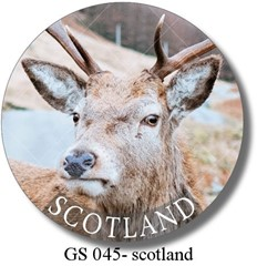 GS 045 - scotland deer 1