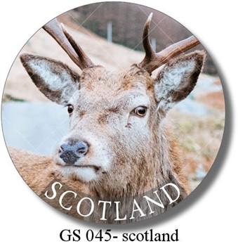GS 045 - scotland deer 1