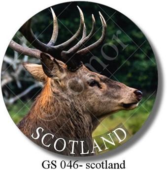 GS 046 - scotland deer 2